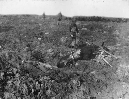 Bogged mule, Passchendaele, 1917