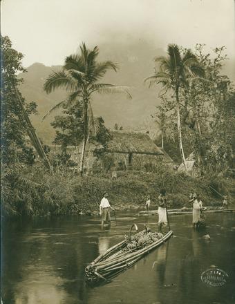 [River scene, Fiji. Transporting Bananas by raft.]