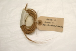 sample of cordage made from the rolled fibre from ...