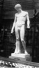 plaster statue of the male figure, Antinous