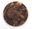 medal, commemorative.